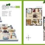 Design Duplex House Plan