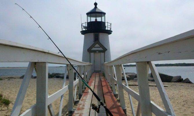 Extended Fishing Reports Archives Cape Cod