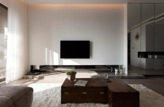 Modern Living Room Accents Design