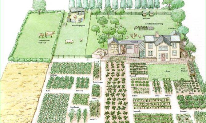Acre Homestead Layout Garden Design Vegetable