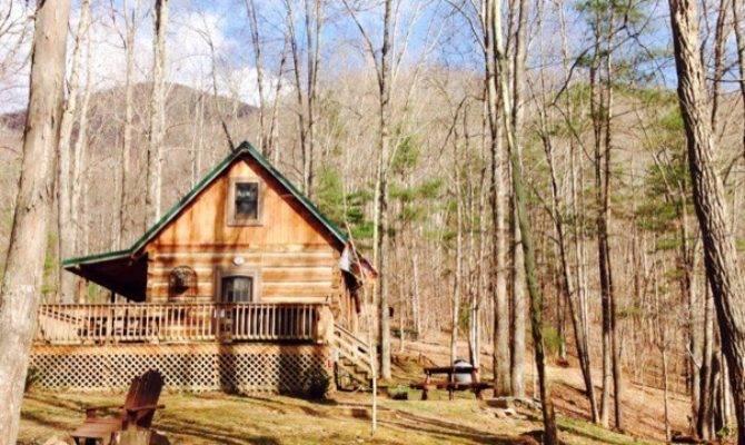 Bearadise Tiny Cabin