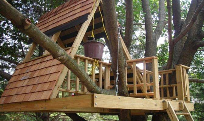 Build Simple Treehouse Step