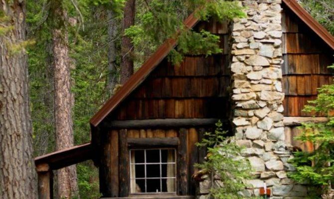Cabin Woods Art Print Nature Society