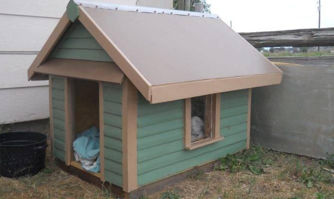 Custom Made Dog House