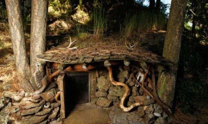 Dan Price Built Coolest Tiny House Ground