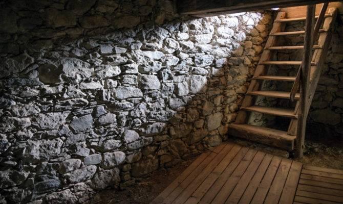 Down Cellar Restoration Design Vintage