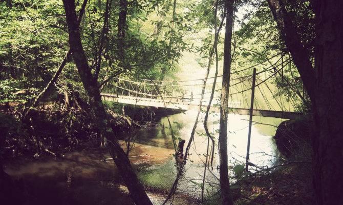 Edisto River Treehouses Gallivant