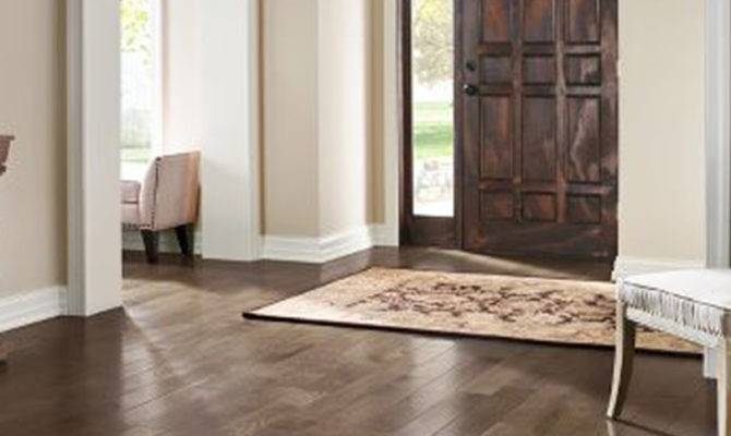 Entryway Rugs Hardwood Floors Options Stabbedinback