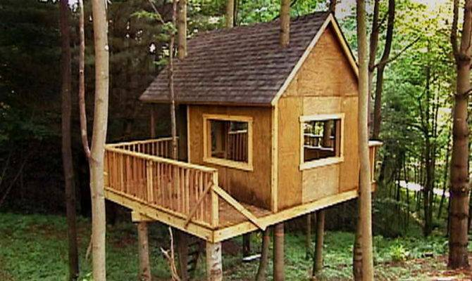 House Building Tree Sale Diy Treehouse Well