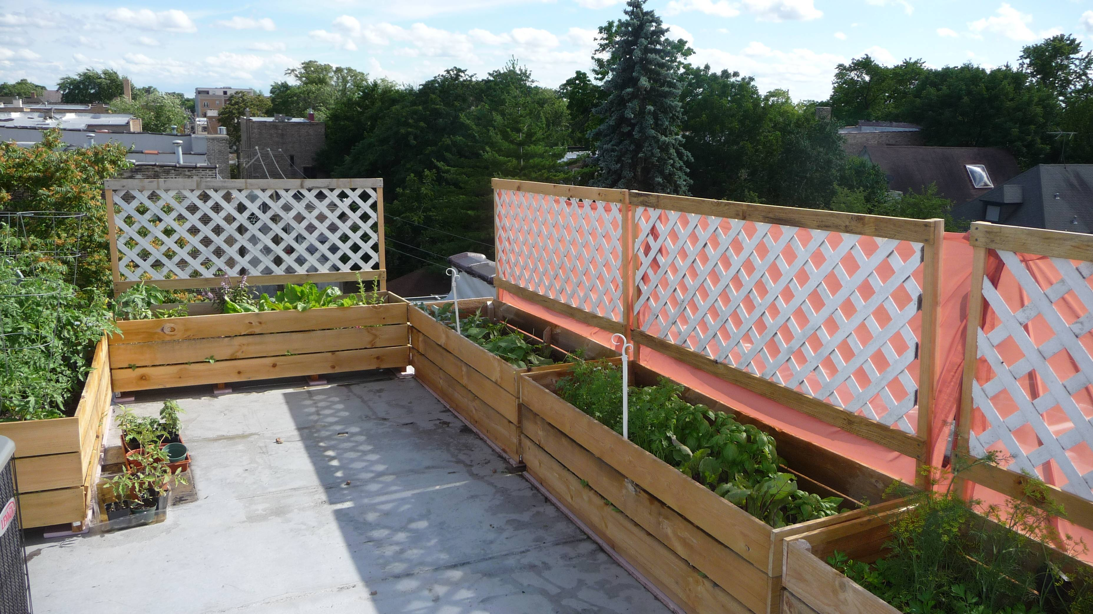 Ideas Rooftop Terrace Design Along Amazing House Roof