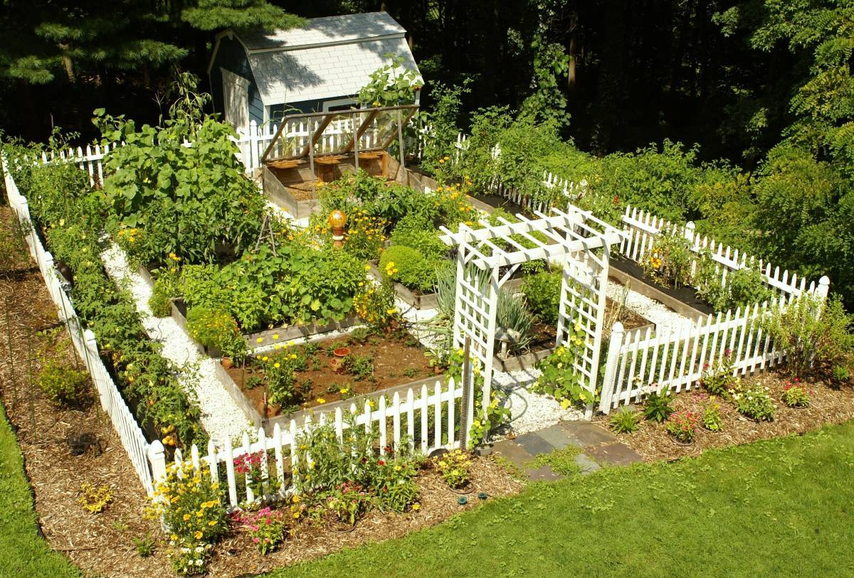 Impressive Vegetable Garden Designs Plans