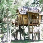 Kids Tree House Designs Small Artistic Design Green