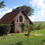 Modern House Slow Death African Informal Setting