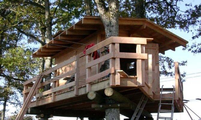 New Custom Made Tree Houses