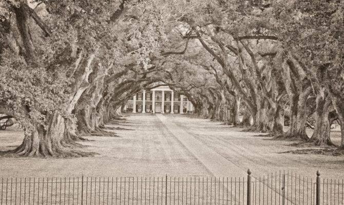 Oak Alley Plantation Wedding Louisiana