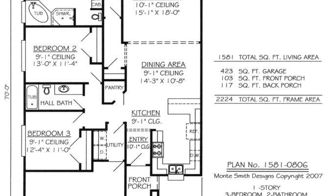 One Story House Plans Narrow Lots