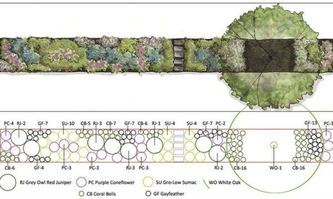 Planting Plan Landcape Design Pinterest