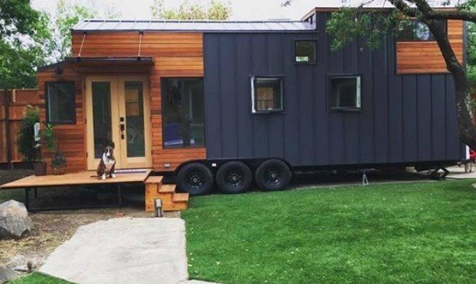 Three Live Work Tiny Home