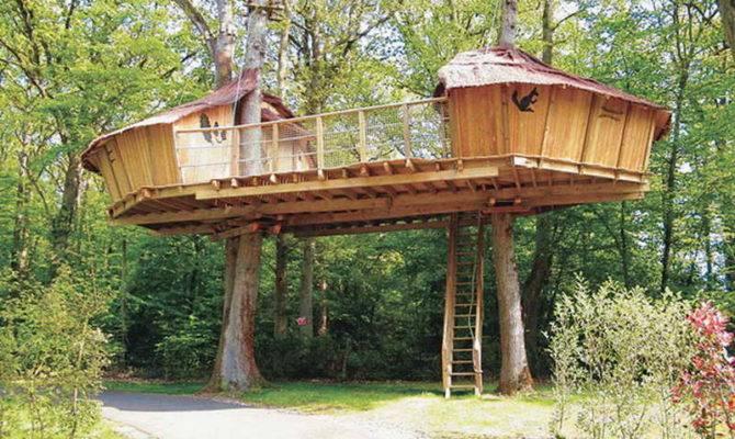 Treehouse Plans Designs Diy Adult Tree Houses