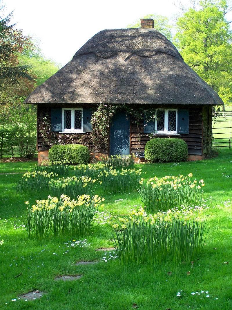 Warm Cozy Cottage Architecture Interior Design